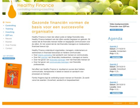 Healthy Finance // website home