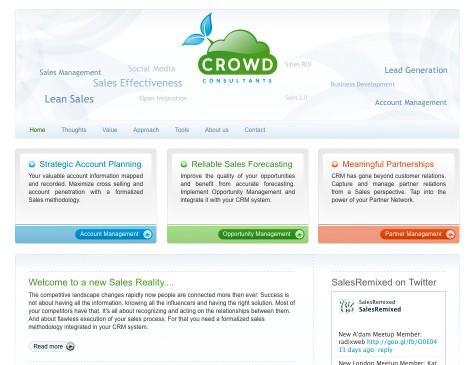 Crowd Consultants // website 01